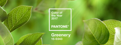 couleur pantone greenery