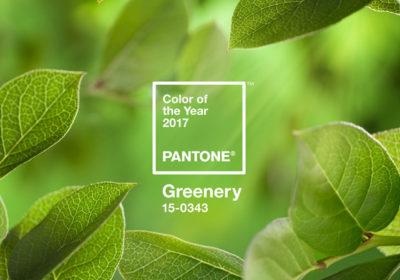 La couleur Pantone de l'année !